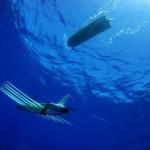 Wave Glider – в поисках приключений на глубине
