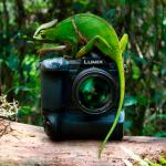 Новейшая кинокамера Panasonic AU-EVA1